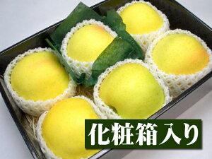 長野県産 特選青リンゴ トキ[大玉6個入り化粧箱]