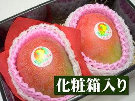 【1月22日以降予定★】ペルー産 アップルマンゴー[大玉2個入り化粧箱]【バレンタイン】【バレンタインデー】