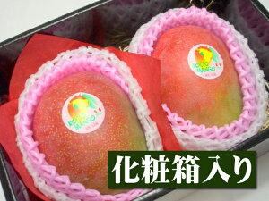 ペルー産 アップルマンゴー[大玉2個入り化粧箱]【果物】【マンゴー】【お供え】【お見舞い】【内祝】【ギフト】【贈り物】【プレゼント】【グルメ】【ホワイトデー】