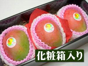 ペルー産 アップルマンゴー[大玉3個入り化粧箱]【果物】【マンゴー】【お供え】【お見舞い】【内祝】【ギフト】【贈り物】【プレゼント】【グルメ】【ホワイトデー】