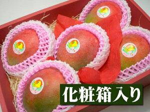 ペルー産 アップルマンゴー[大玉5個入り化粧箱]【果物】【マンゴー】【お供え】【お見舞い】【内祝】【ギフト】【贈り物】【プレゼント】【グルメ】【ホワイトデー】