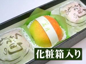 【10月下旬以降予定★】長野県産 最高級青リンゴ 特選名月[3個入り化粧箱]