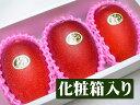 【順次発送可能★】とっておきのギフトにも最適★宮崎県産 完熟アップルマンゴー 太陽のタマゴ[中玉3個入り化粧箱]【…