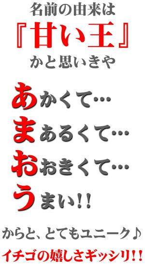 【12月上旬以降予定★】福岡県産博多あまおう[DX2パック入り箱]【送料無料】【10P07Nov15】