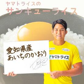 愛知県産あいちのかおり10kg(5kg×2) 令和2年産工場直送 お米 米 数量限定