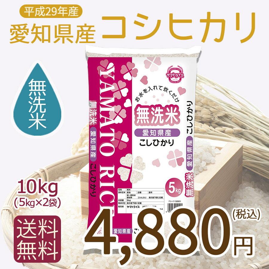 【H29年産】【送料無料】【無洗米】愛知県産こしひかり10kg(5kg×2)【RCP】