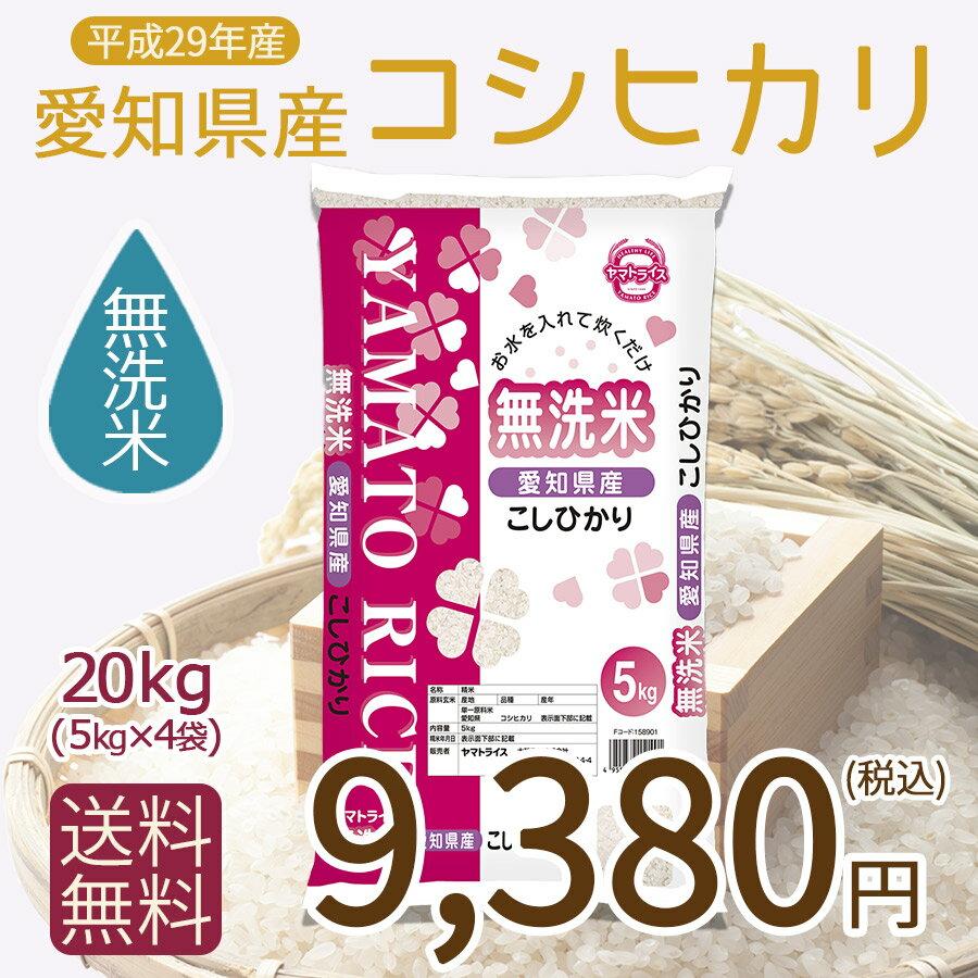 【H29年産】【送料無料】【無洗米】愛知県産こしひかり20kg(5kg×4)【RCP】