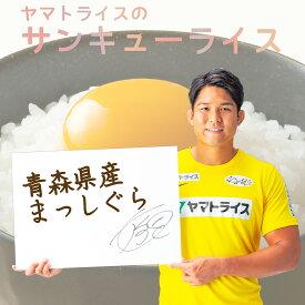 まっしぐら 青森県産 10kg (5kg×2) 令和2年産お米 米 数量限定 特別価格