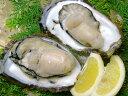 伊勢志摩天然岩牡蠣セット中サイズ10個入