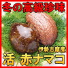 赤ナマコ1kg