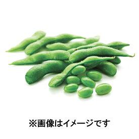 【数量限定】【訳あり】CN 塩味えだ豆 500g