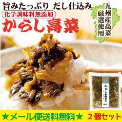 やまや やまやのからし高菜(無添加)2個セット(九州 お取り寄せ グルメ おつまみ ご飯のお供 手土産 ギフト)