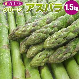 (北海道産) グリーンアスパラガス 1.5kg(L/2L混) 北海道 アスパラ ギフト 贈り物 贈答 高級 高級ギフト 旬 産地直送 産直 春 グリーン アスパラ 太 お取り寄せ 食べ物 食品 贈物 贈答品 アスパラ