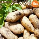 新じゃがいも メークイン L/2L混 5kg /10月上旬予約順発送/ ギフトに 北海道産 北海道 じゃがいも ジャガイモ 送料無…