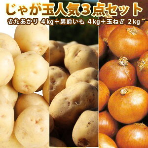 じゃがいも 北海道 ジャガイモ 玉ねぎ セット きたあかり 4kg 男爵 4kg 玉ねぎ 2kg 送料無料 じゃがいも たまねぎ セット きたあかり 男爵 ギフト 贈り物 贈答 プレゼント 内祝い お取り寄せ