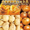 かぼちゃ 北海道産 じゃがいも かぼちゃ 玉ねぎ 北海道野菜セットA( きたあかり 4kg かぼちゃ 2玉 玉ねぎ 4kg)【送料無料】 【10月上…