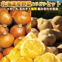 じゃがいも 玉ねぎ 組み合わせ自由 送料無料 北海道産 北海道 野菜よりどりセット 3種類購入 送料無料/10月上旬予約順…