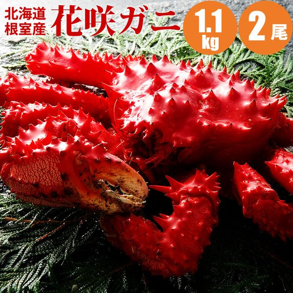 【楽天大感謝祭】【かに】【カニ 送料無料】 花咲ガニ 1.1kg×2尾 送料込み 蟹 【内祝い 誕生祝 ギフト お歳暮 御歳暮】【あす楽対応】