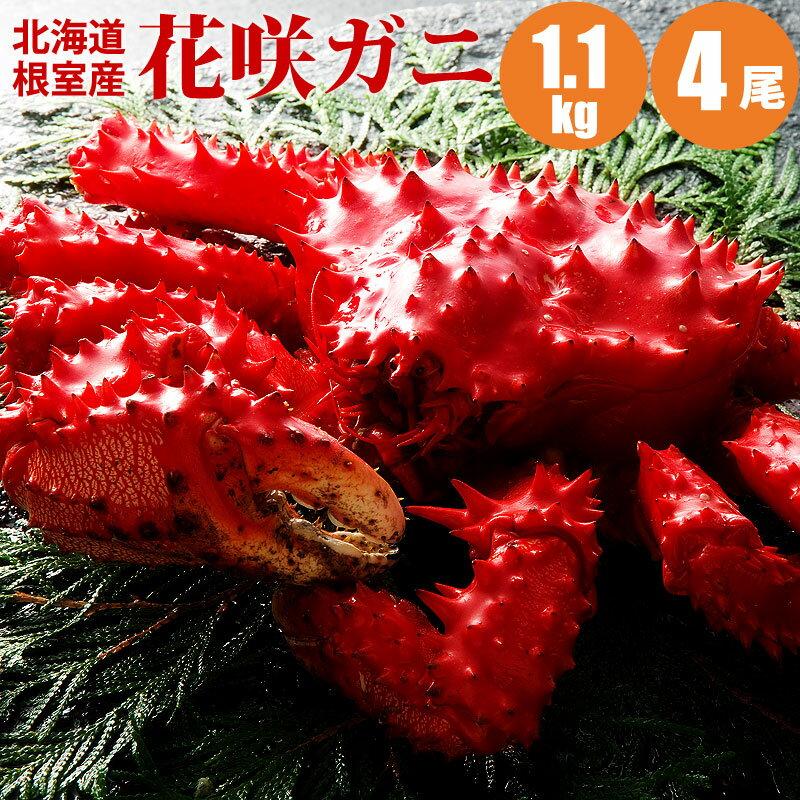 【楽天大感謝祭】【カニ 送料無料】【かに】 花咲ガニ1.1kg×4尾 送料込み 蟹 【内祝い 誕生祝 ギフト お歳暮 御歳暮】【あす楽対応】