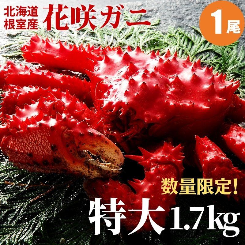 【楽天大感謝祭】【カニ 送料無料】【海鮮 ギフト】 「花咲ガニ1.7kg×1尾」 送料込み 蟹 【内祝い 御祝い 御礼 誕生祝 誕生プレゼント】【あす楽対応】