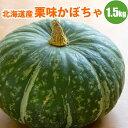 【GIFT】 北海道産ホクホク栗味かぼちゃ1玉(1.5kg以上) 【送料無料】 北海道産かぼちゃで甘い!栗のような味のかぼ…