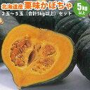 北海道産ホクホク栗味かぼちゃ2玉〜5玉(合計5kg以上) ギフト お取り寄せ 食品 冬至 カボチャ 南瓜 贈り物 贈答品 ギ…