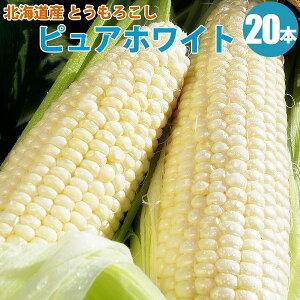 とうもろこし ピュアホワイト 20本 とうもろこし 北海道 朝もぎ 白い とうもろこし 送料無料 生 生食 北海道 トウモロコシ ピュアホワイト ギフト 贈り物 贈答 プレゼント 内祝い お取り寄せ