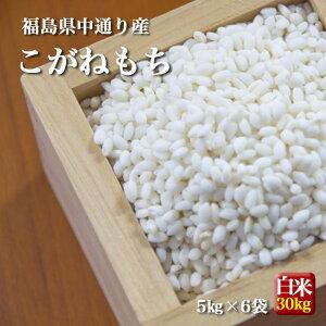 もち米 福島県中通り産 こがねもち 白米:30kg(5kg×6個) 令和2年産 ※沖縄県・離島対応不可