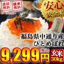 【送料無料】平成28年産 福島県中通り産 ひとめぼれ 玄米:30kg(白米:約27kg)