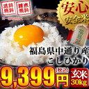 【送料無料】平成28年産 福島県中通り産 コシヒカリ 玄米:30kg(白米:約27kg)