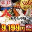【送料無料】平成28年産 福島県中通り産 天のつぶ 玄米:30kg(白米:約27kg)