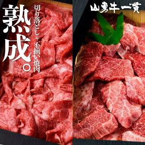 熟成飛騨牛 山勇牛 切り落とし300g&焼肉500g セット うす切り 切落し 焼肉 バーベキュー すき焼き しゃぶしゃぶ A4/A5 訳あり 切落し 和牛 メス牛 雌牛 牛肉 冷蔵 熟成肉 ギフト お誕生日 還暦