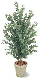 タカショー グリーンデコ鉢付 観葉植物「ユーカリ」1.8m