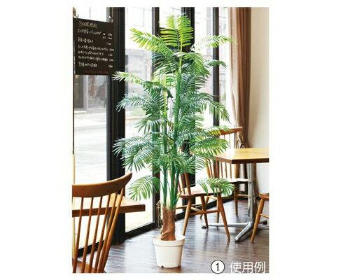 人工観葉植物 アレカヤシ 立ち木 (H180cm) 1台 人工樹木