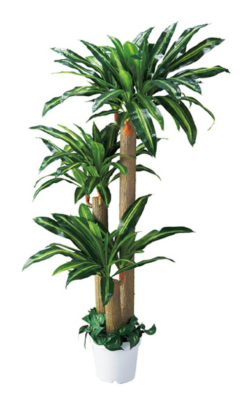 人工樹木 幸福の木(H180cm) 1台 立ち木 人工観葉植物