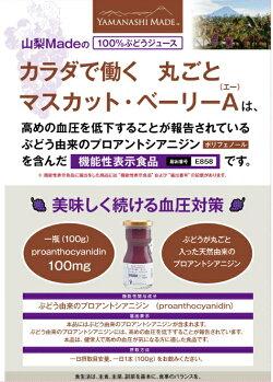 食べるぶどうジュースマスカットベーリーA100%ジュース【お試し1個】山梨産完全無添加