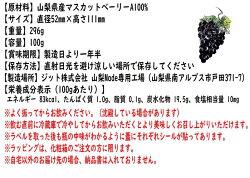 食べるぶどうジュースカラダで働く丸ごとマスカット・ベーリ—A100%ジュース【機能性表示食品お試し1個】山梨産完全無添加送料込み