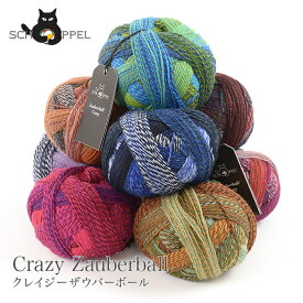 毛糸 輸入 グラデーション / SCHOPPEL(ショッペル) Crazy Zauberball(クレイジーザゥバーボール) 1 / あす楽