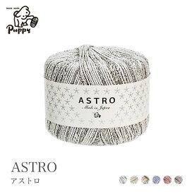 毛糸 ラメ入り 段染め サマーヤーン / Puppy(パピー) アストロ 春夏