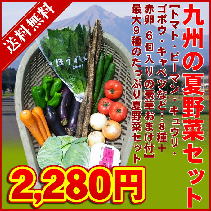九州・夏の野菜セット 【クール便・送料無料】 最大9種 → 2,280円(税別) 九州・宮崎よりお届け