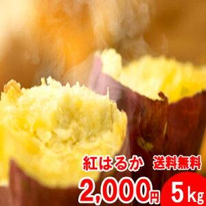 ●紅はるか5kg入2セット以上ご購入で【野菜おまけ】