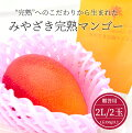 【宮崎産】みやざき完熟マンゴー