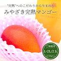 【宮崎産】みやざき完熟マンゴー(ご家庭用)