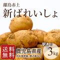 【鹿児島県産】赤土新ばれいしょ