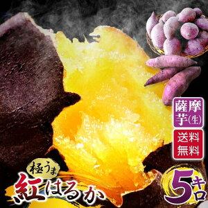 紅はるか (べにはるか) 熟成 送料無料 さつま芋 サツマイモ 生 5kg (5キロ) 茨城県 国産 薩摩芋(さつまいも) 生さつまいも 冬は 焼き芋(焼きいも) 夏は アイス 焼芋(ヤキイモ) お芋 ス