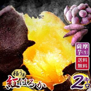 さつまいも 2キロ 紅はるか(べにはるか)送料無料 熟成 生 さつま芋(サツマイモ) 2kg 茨城県 国産 薩摩芋 生さつまいも 冬は やきいも(焼芋) 夏は アイス 冷 焼き芋(ヤキイモ) お