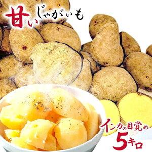 じゃがいも 北海道 青森インカのめざめ 5キロ 送料無料 甘い 芋 セット北海道産 ジャガイモ 5kg しんじゃが いも お取り寄せグルメ美味しい おかず いも 赤ちゃん おやつ 離乳食 インカの目覚