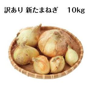 訳あり 規格外品 国内産 新玉ねぎ 10kg サイズ色々 業務用 国産野菜 新タマネギ たまねぎ 新たまねぎ まとめ買い