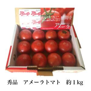 トマトの最高峰 秀品 静岡県産 高糖度トマト アメーラ 甘い フルーツトマト 約1kg まとめ買い お取り寄せ お中元 ギフト 贈答用 母の日 父の日 お取り寄せグルメ 送料無料 糖度10度以上も 栄