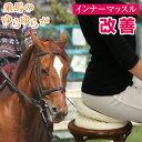 ゆら太郎 【エクササイズチェア 体幹 インナーマッスルトレーニング 骨盤 ダイエット ウエストツイスター 乗馬運動 …